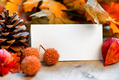 Blank Place Card Amongst Autumn Foliage Royalty Free Stock Photos