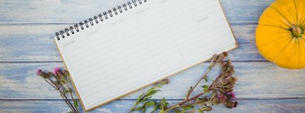 Blank planner mock up with autumn pumpkins. Long wide banner Top view of autumn orange pumpkins and dry flowers with grass background over blue toned wooden royalty free stock photography