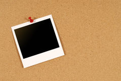 Single Polaroid photo print pinned to cork notice board, copy space Royalty Free Stock Image