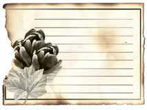 Blank post card for condolence,. Old paper Royalty Free Stock Photography
