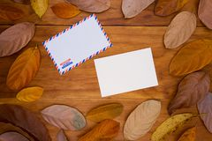 Blank postcard and air mail envelope on warm wooden background in orange leaf frame. royalty free stock photos