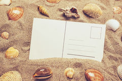 Blank postcard in hot beach sand with some sea shells. Copy space for summer holiday vacation message Stock Photography