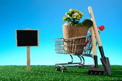 Blank poster and potted flower in a shopping cart with a garden spade and rake. Blank poster and a potted flower in a shopping cart with a garden shovel and rake Royalty Free Stock Photography