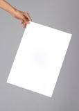 Blank poster. Woman holding a blank poster Stock Photography
