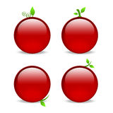 Blank red web icons with leaf embellishments. Empty red cherry or apple style icons with leaf details Royalty Free Stock Photos