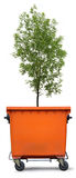 Blank refuse bin with green ash tree Stock Photos