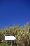 Blank roadsign next to reeds and bullrushes in Spain Royalty Free Stock Photo