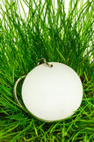 Blank round badge in green grass. Blank round white badge in green grass royalty free stock photos