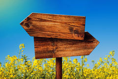 Blank Rustic Opposite Direction Wooden Sign in Rapeseed Field stock photo