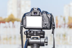 Blank screen on camera Stock Photography