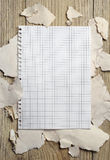 Blank sheet of notebook on the background of a torn paper Royalty Free Stock Images