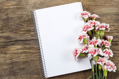 Blank sheet of notebook and red and white carnation Stock Photo