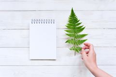 Blank sheet of notepad on the white wooden table royalty free stock images
