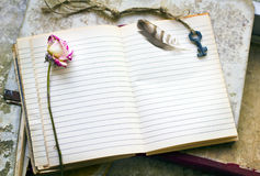 Blank sheet in an old notebook framed with key, feather and dead Royalty Free Stock Images