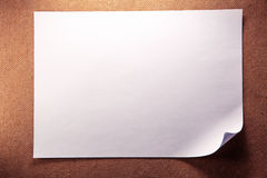 Blank sheet of paper Stock Photography