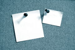 Blank sheet paper on bulletin board Stock Image