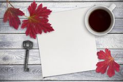 Blank sheet of paper, red leaves and a cup of tea on wood backgr Stock Images