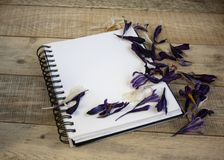 A blank sheet of paper for text with flower petals on a wooden background. Illustration of a hobby, drawing and inspiration. Top v. A blank sheet of paper for royalty free stock images