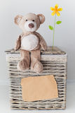 Blank sheet and a teddy bear on a basket Stock Photos
