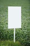 Blank Sign. Blank empty white sign in a soy bean field ready for you to add type Stock Photos