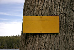 Blank Sign. Nailed to a tree - view of sky and trees in background royalty free stock photos
