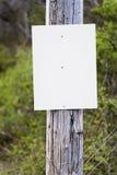 Blank Sign Background on Telephone Pole Stock Images