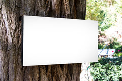Blank Sign Board on Body of Tree Stock Photography