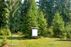 Blank sign board in the park Royalty Free Stock Image