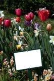 Blank Sign in Garden Royalty Free Stock Photos