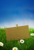 Blank sign green garden background Stock Image