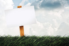 Blank sign on the lawn Royalty Free Stock Photo