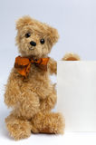 Blank sign - Teddy Bear Royalty Free Stock Images