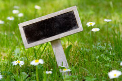 Blank signboard in the meadow Royalty Free Stock Image