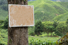 Blank signboard in nature Royalty Free Stock Photography