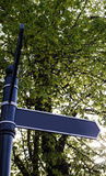 Blank signpost and trees. Close up detail of a blank signpost and trees Stock Photography