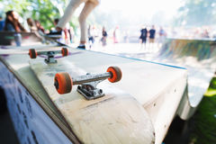 Blank skateboard on the ramp Royalty Free Stock Photography