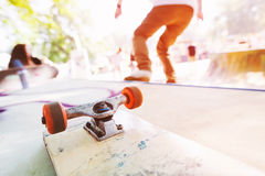 Blank skateboard on the ramp Stock Images