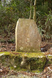 Blank Stone Sign in the jungle Stock Image
