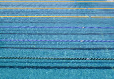 Blank swimming pool  with lane ropes Royalty Free Stock Photos