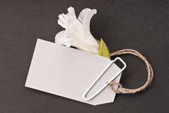 Blank tag with flower Stock Image