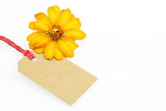 Blank tag and flower Stock Photography