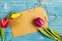 Blank tag with fresh spring tulips royalty free stock image