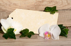 Blank tag leaves and flower Royalty Free Stock Image