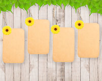 Blank tag and sunflower Stock Photography