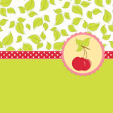 Blank template for cherry greetings card Stock Image