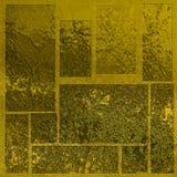 blank textur för guld Royaltyfri Foto