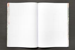 blank tidskrift Royaltyfria Foton