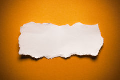 Blank Torn Paper. Blank piece of torn paper on an orange surface stock image
