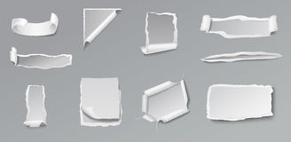 Blank Torn Paper Set Stock Photo