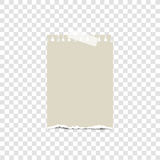Blank torn paper on sticky tape, ready for your message. Vector illustration. Stock Images